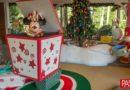 Celebre unas festividades mágicas en Orlando