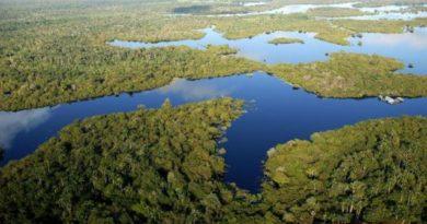 ¿Cuándo se formó el río Amazonas?