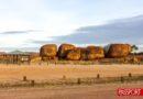 Un 'Road Trip' por la Australia más Inhóspita
