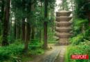 Tohoku, el Japón más genuino