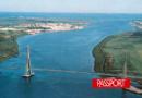 Los delfines vuelven al Tajo en Lisboa